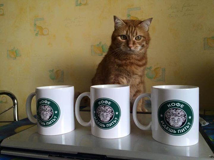 этом картинка пойдем выпьем кофе фотограф острове