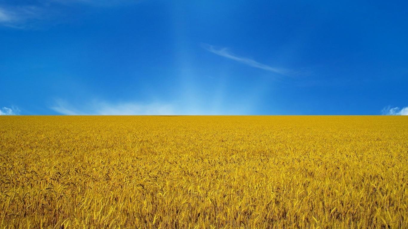 Винахідники з України перемогли на міжнародному конкурсі
