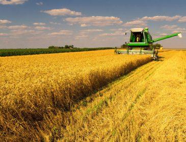 Що гальмує земельну реформу в Україні