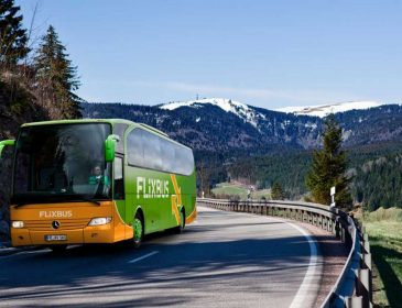 Найбільший автобусний перевізник Європи запускає рейси з України