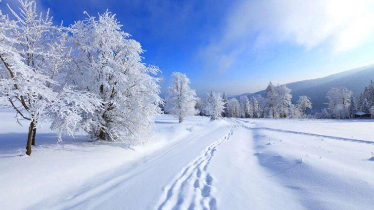 Холодна погода- це не привід сидіти вдома!: дізнайтеся найкращі місця в Україні для відпочинку взимку