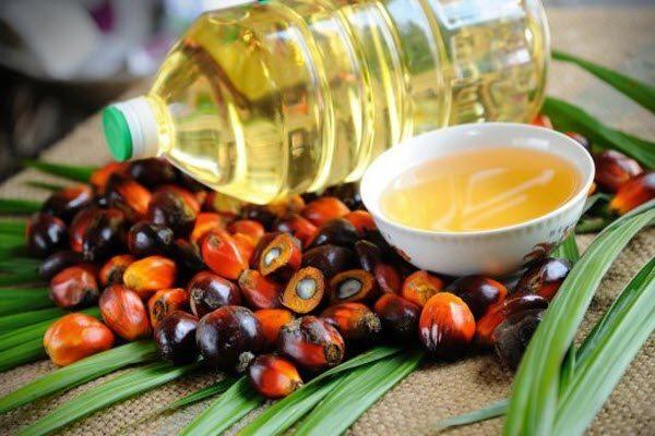 Верховна Рада планує заборонити пальмову олію: дізнайтесь деталі