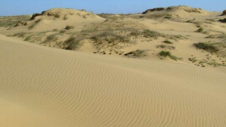 """""""Зміни клімату"""": Україна перетворюється на пустелю"""
