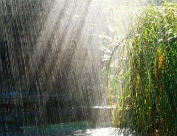 Прогноз погоди на 21 червня