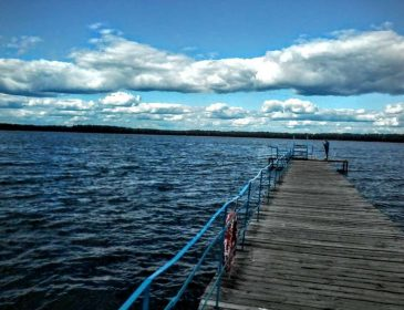 """""""Рідкісна орхідея і дорогі ягоди"""": особливості відпустки на Шацьких озерах"""
