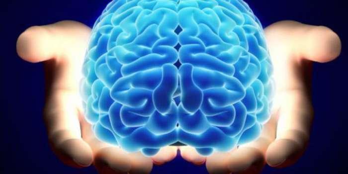 Вчені відкрили секрет, як зберегти пам'ять і здоровий глузд до похилого віку