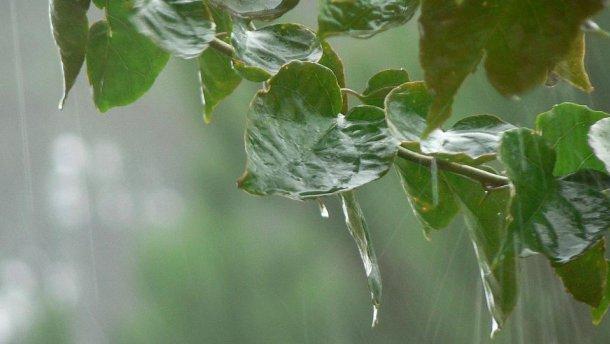 Прогноз погоди на 12 червня