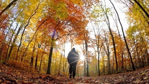 Прогноз погоди на 19 вересня: синоптик сказав, де буде по-літньому спекотно