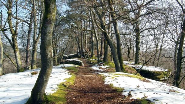 Ні снігу, ні дощу: до весни пару днів, яка погода чекає на українців?