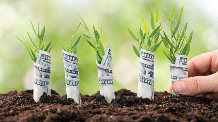 Ринок землі: скільки продали гектарів за перший місяць дії програми
